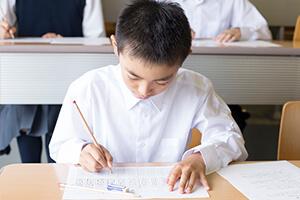 公立小学生対象 テスト対策ミニゼミス